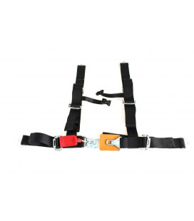 "Racing seat belts 4p 2"" Black - DTM"